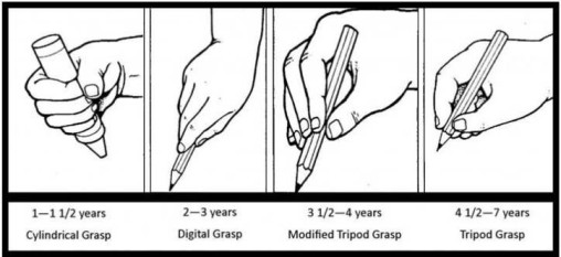 pencil grasp Erhardt 1982